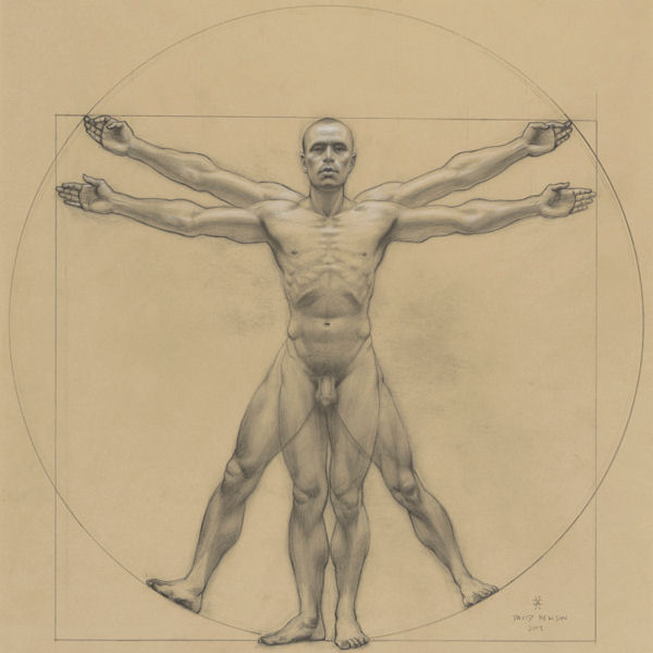 vitruvian man sketch by artist David Hewson